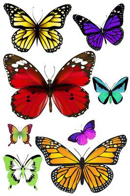 Vlinders taart sheet