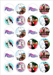 Amika cake toppers
